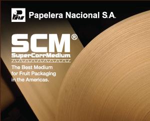 SCM-productos